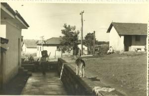 Vila Vicentina 1